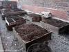 Garden beds that will soon grow ingredients