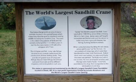 A quick history of Sandy the sandhill crane
