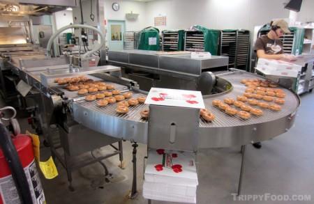 The conveyor of hot doughnuts at Krispy Kreme